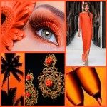 picmonkey collage orange 150x150 P&P Design